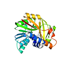 Molmil generated image of 5jdy