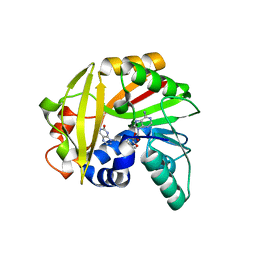 Molmil generated image of 5je1