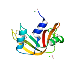 Molmil generated image of 5jml