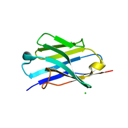 Molmil generated image of 5jmr