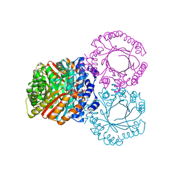 Molmil generated image of 5kcg
