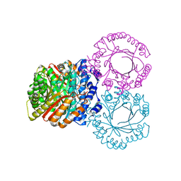 Molmil generated image of 5kcq