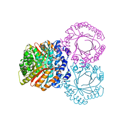 Molmil generated image of 5kcy