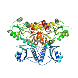 Molmil generated image of 5kn0