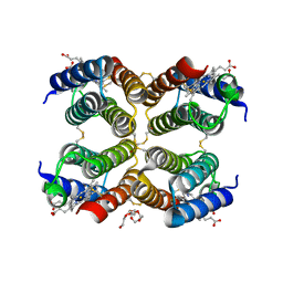 Molmil generated image of 5l32