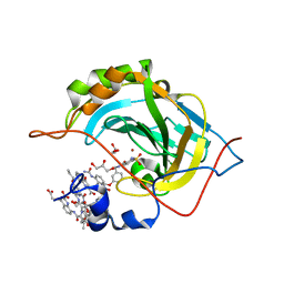 Molmil generated image of 5l3o