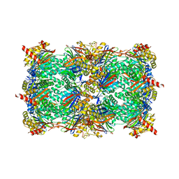 Molmil generated image of 5l5h