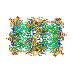 Molmil generated image of 5l5x
