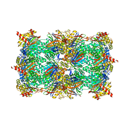 Molmil generated image of 5l65