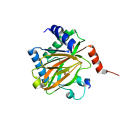 Molmil generated image of 5l9b