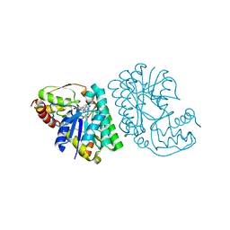 Molmil generated image of 5lc1