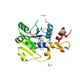 Molmil generated image of 5llt