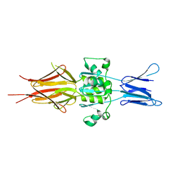 Molmil generated image of 5lnl