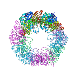Molmil generated image of 5lnw