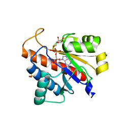 Molmil generated image of 5lw0