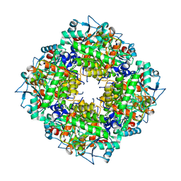 Molmil generated image of 5lzl