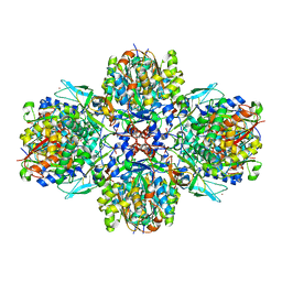 Molmil generated image of 5mg5