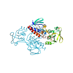 Molmil generated image of 5mip