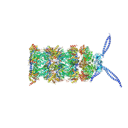 Molmil generated image of 5mpa