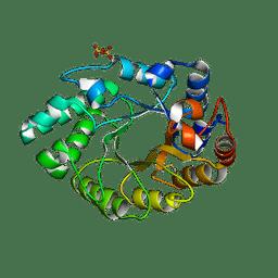Molmil generated image of 5mrj