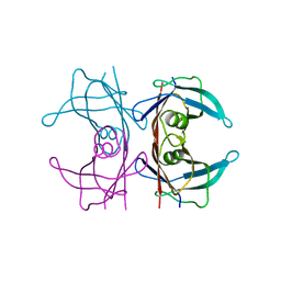 Molmil generated image of 5nfw