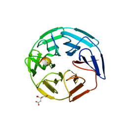 Molmil generated image of 5nkp