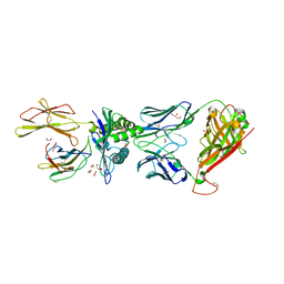 Molmil generated image of 5nmg