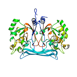 Molmil generated image of 5nmp