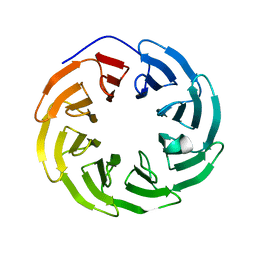 Molmil generated image of 5nnz