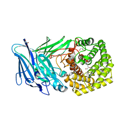 Molmil generated image of 5no8