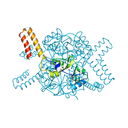 Molmil generated image of 5nvd
