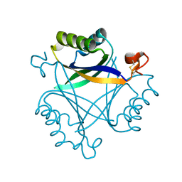 Molmil generated image of 5o3s