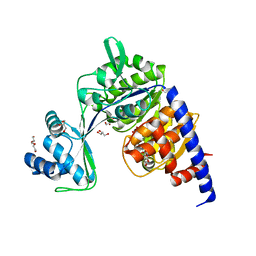 Molmil generated image of 5o5y