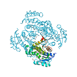 Molmil generated image of 5oir