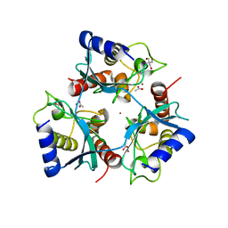 Molmil generated image of 5ojj