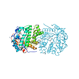 Molmil generated image of 5oke