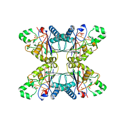 Molmil generated image of 5pgm