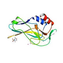 Molmil generated image of 5qrj