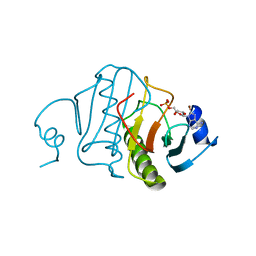 Molmil generated image of 5rhn
