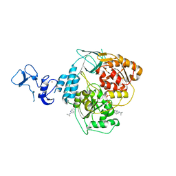 Molmil generated image of 5rlv