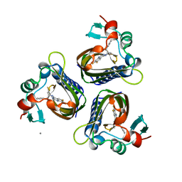 Molmil generated image of 5std