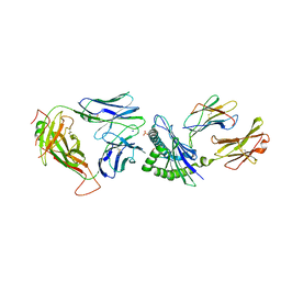 Molmil generated image of 5swz