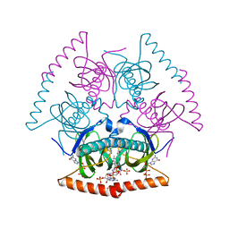 Molmil generated image of 5szz