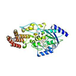 Molmil generated image of 5t8y