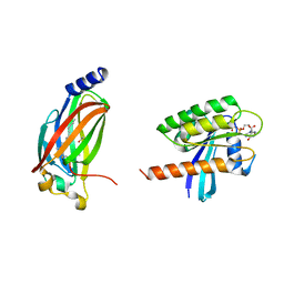 Molmil generated image of 5tb5