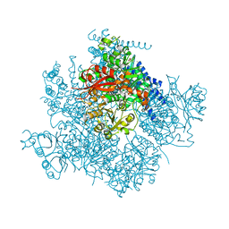 Molmil generated image of 5tj6
