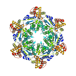 Molmil generated image of 5txv
