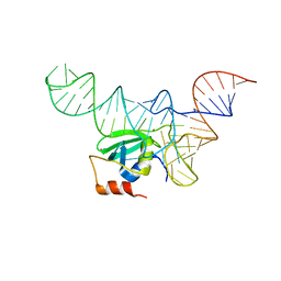 Molmil generated image of 5ud5