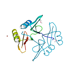 Molmil generated image of 5uhj