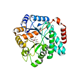 Molmil generated image of 5utp